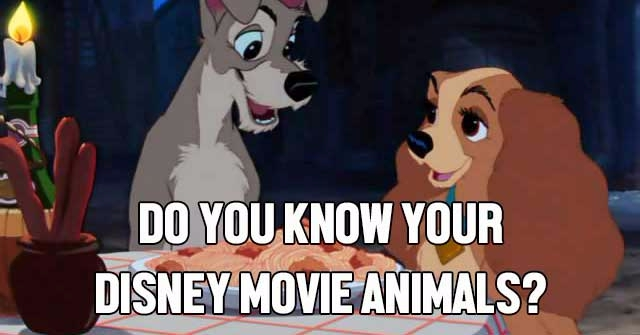 Do You Know Your Disney Movie Animals?