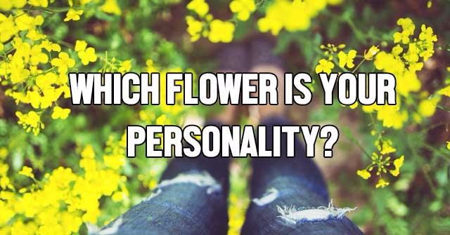 Which Flower Is Your Personality?