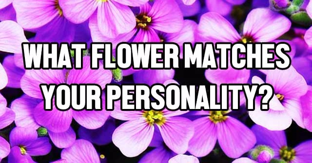 What Flower Matches Your Personality?