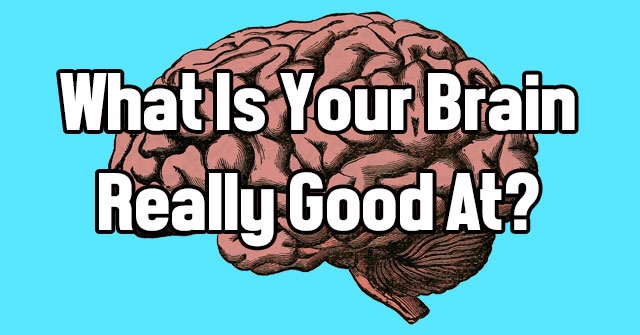 What Is Your Brain Really Good At?
