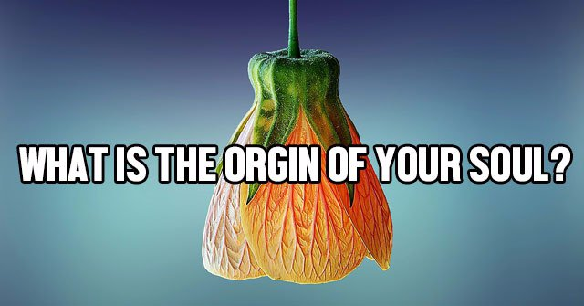 What Is The Orgin Of Your Soul?