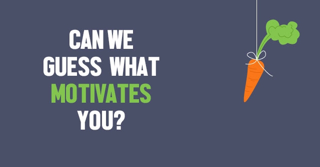 Can We Guess What Motivates You?
