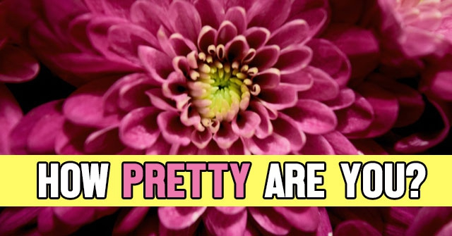 How Pretty Are You?