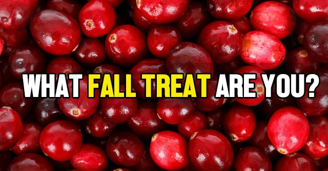 What Fall Treat Are You?