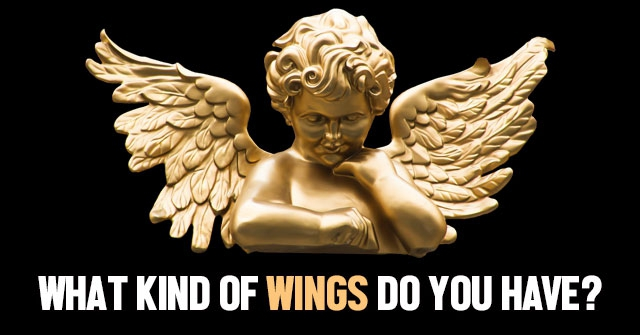 What Kind Of Wings Do You Have?