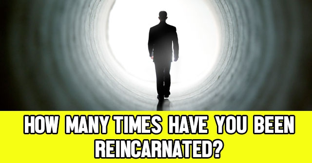 What Will You Be Reincarnated As? | QuizLady