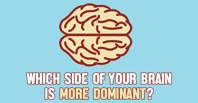 Which Side Of Your Brain Is More Dominant?