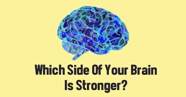 Which Side Of Your Brain Is Stronger?
