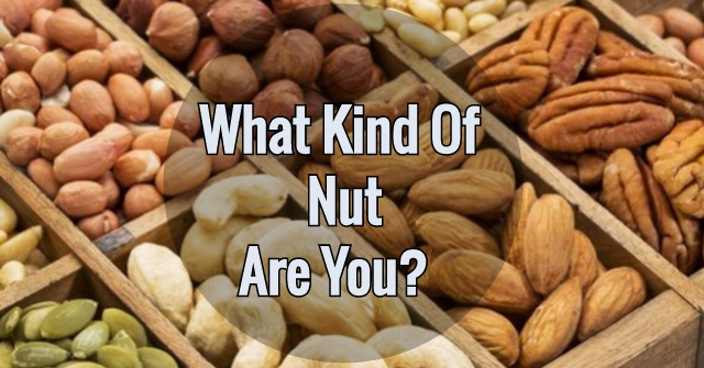 What Kind Of Nut Are You?