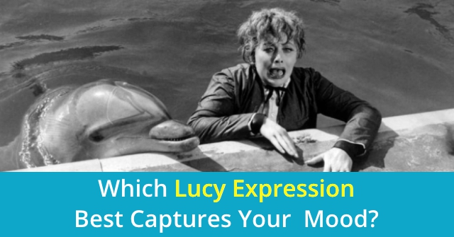 Which Lucy Expression Best Captures Your Mood?