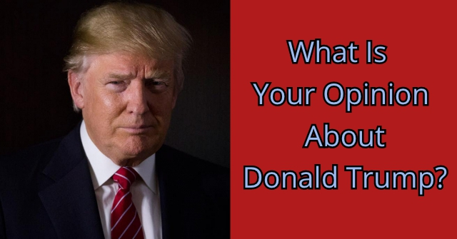 What Is Your Opinion About Donald Trump?