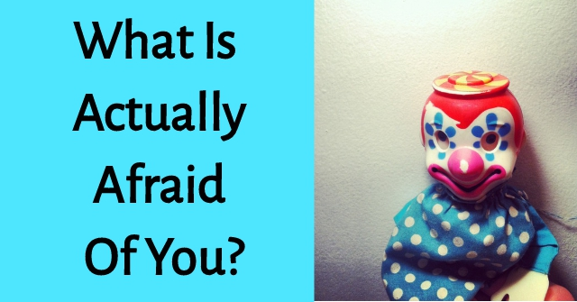 What Is Actually Afraid Of You?
