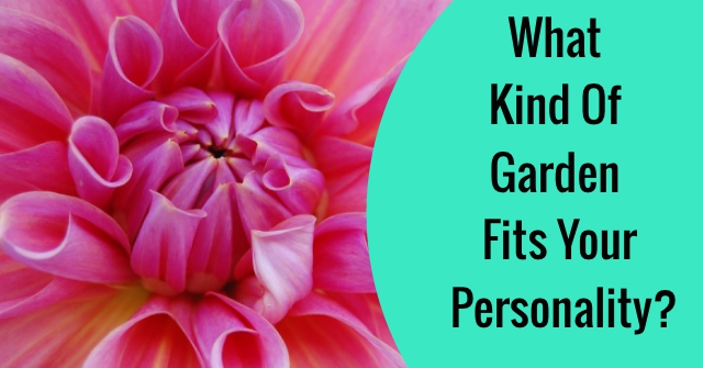 What Kind Of Garden Fits Your Personality?