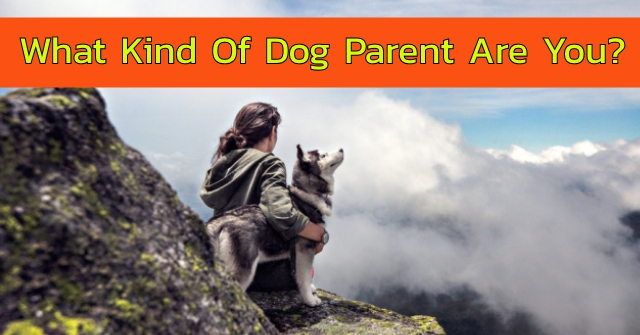 What Kind Of Dog Parent Are You?