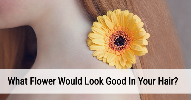 What Flower Would Look Good In Your Hair?