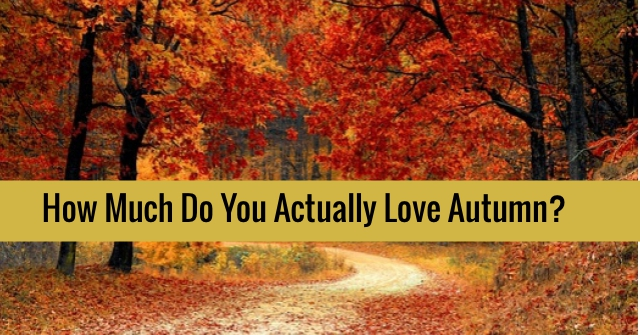 How Much Do You Actually Love Autumn?