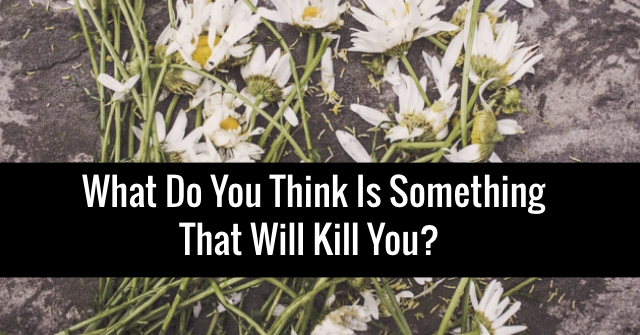 What Do You Think Is Something That Will Kill You?