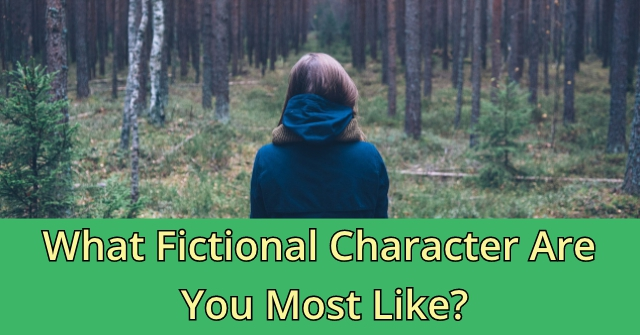 What Fictional Character Are You Most Like?