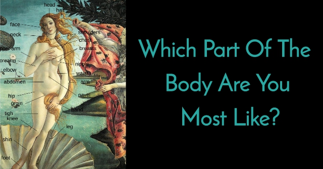 Which Part Of The Body Are You Most Like?