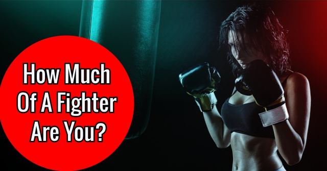 How Much Of A Fighter Are You?