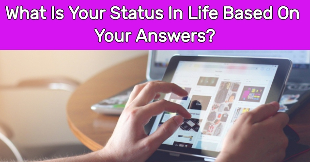 What Is Your Status In Life Based On Your Answers?