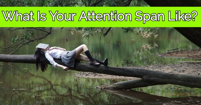 What Is Your Attention Span Like?