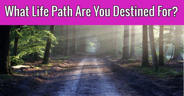 What Life Path Are You Destined For?