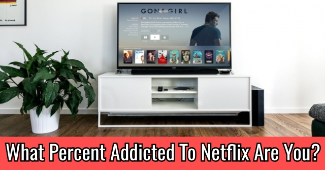 What Percent Addicted To Netflix Are You?