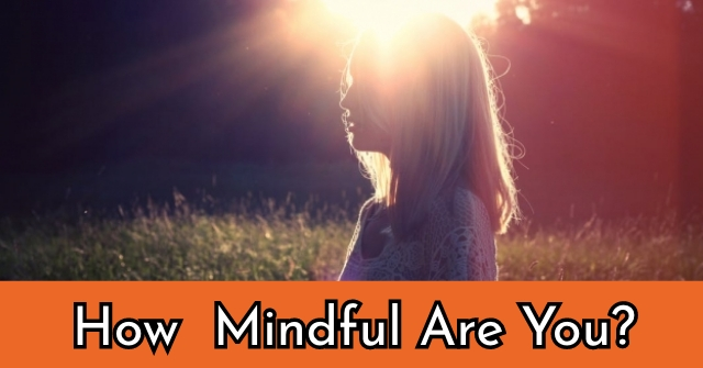 How Mindful Are You?