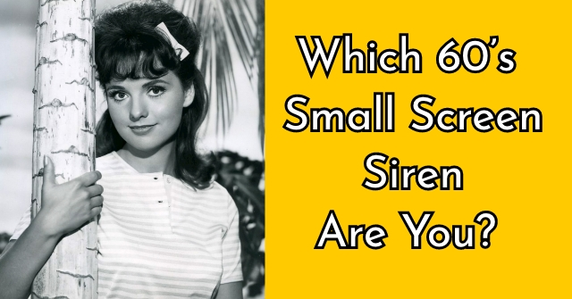 Which 60's Small Screen Siren Are You?