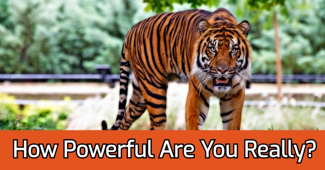 How Powerful Are You Really?