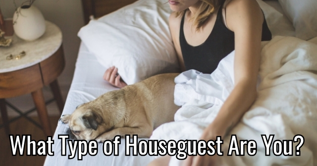 What Type of Houseguest Are You?