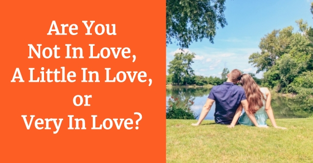 Are You Not In Love, A Little In Love, or Very In Love?