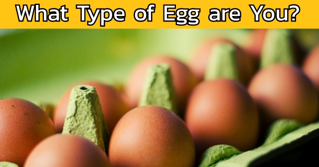 What Type of Egg are You?