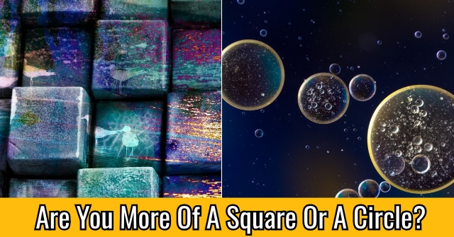 Are You More Of A Square Or A Circle?