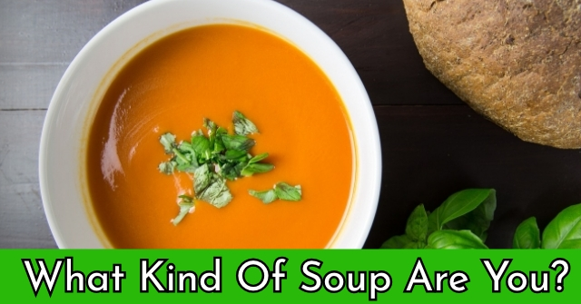 What Kind Of Soup Are You?