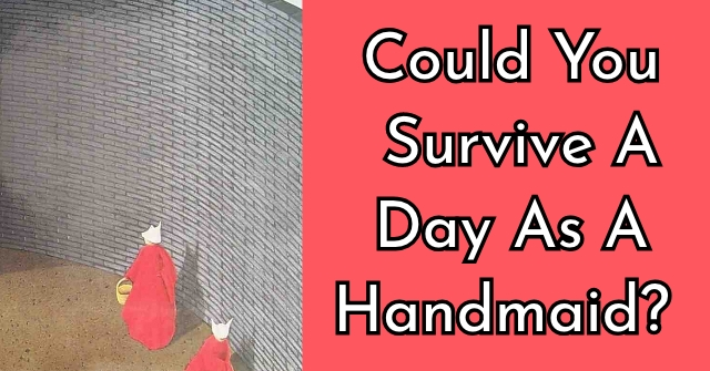 Could You Survive A Day As A Handmaid?