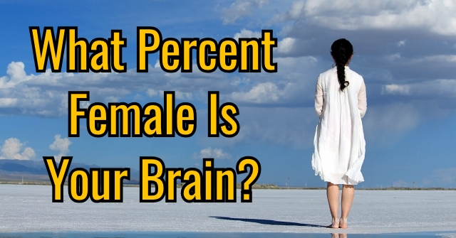 What Percent Female Is Your Brain?