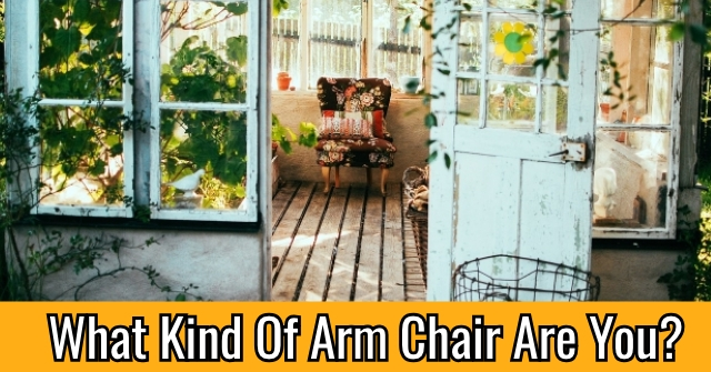 What Kind Of Arm Chair Are You?