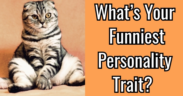 What's Your Funniest Personality Trait?