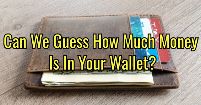 Can We Guess How Much Money Is In Your Wallet?