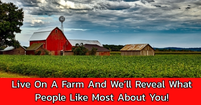 Live On A Farm And We'll Reveal What People Like Most About You!