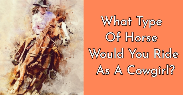What Type Of Horse Would You Ride As A Cowgirl?