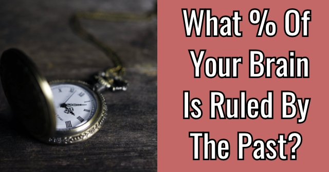 What % Of Your Brain Is Ruled By The Past?