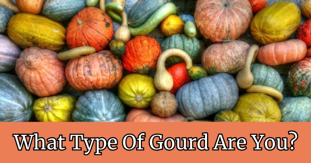 What Type Of Gourd Are You?
